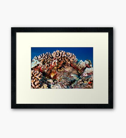 Guardian of the Reef Framed Print
