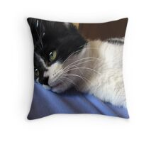Dizzy Daisy Daydreams Throw Pillow