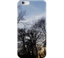 Lurking Series iPhone Case/Skin
