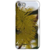 Eucalyptus Erythrocorys, side view iPhone Case/Skin