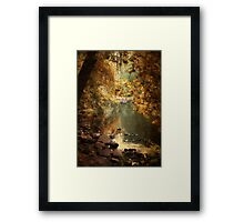 Willow Weep Framed Print