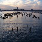 Hudson River at Dusk by Darren Spidell