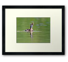 Hard to Swallow Framed Print