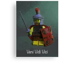Veni, Vidi, Vici by Tim Constable Canvas Print