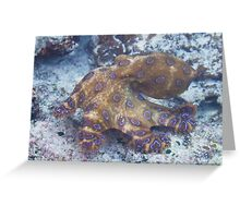 Blue ringed octopus Greeting Card