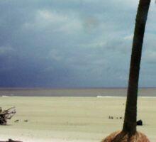 Stormy Beach Scene Sticker