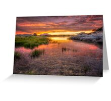 Colorful Muck Greeting Card
