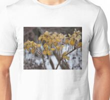 Ice Storm 2013 - My Garden in the Morning  Unisex T-Shirt