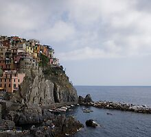Town View,Manarola,Cinque Terre,Italy by Davide Ferrari