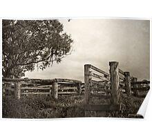 Cattleyard Poster