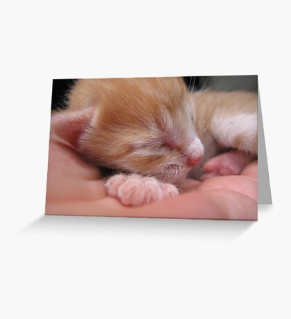 6 days old Greeting Card