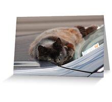 Newest window screen wiper Greeting Card