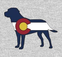 Colorado flag labrador dog by artisticattitud