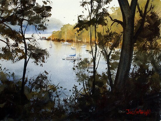 Through the Trees, Brooklyn, NSW by Joe Cartwright