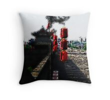 Small Wall of China Throw Pillow