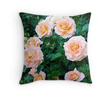 Peaches & Cream Rose Blooms - Rose Garden - Sacramento, CA Throw Pillow