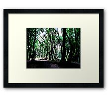The Forest Of The Trolls Framed Print