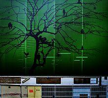 Just hanging around back alleys of Brisbane by Mark Malinowski