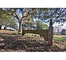The Parish Churchyard, Chiddingly, West Sussex Photographic Print