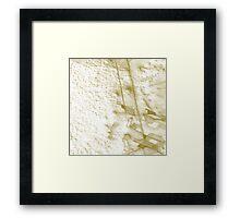 desert settlement Framed Print