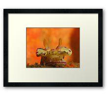 Halifax Nudibranch Framed Print
