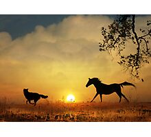 Kindred Spirits Photographic Print