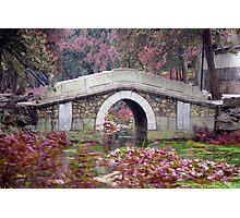 Peaceful Bridge Photographic Print