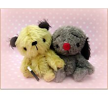 Sooty and Sweep - Handmade bears from Teddy Bear Orphans Photographic Print