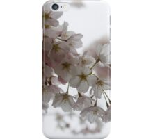 Clouds of Soft Pink Blossoms - a Tribute to Spring iPhone Case/Skin