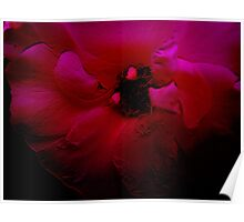 Red Flower. Poster