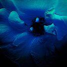 Blue Flower. by Vitta