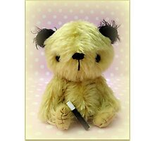 Sooty - Handmade bears from Teddy Bear Orphans Photographic Print