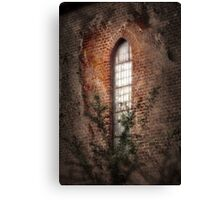 Shining Spirit Canvas Print