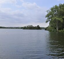 Island in the middle of the Lake by roggcar