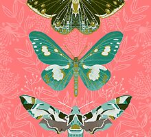 Lepidoptery No. 5 by Andrea Lauren by Andrea Lauren