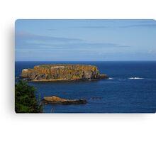 The beautiful coast of Northern Ireland Canvas Print