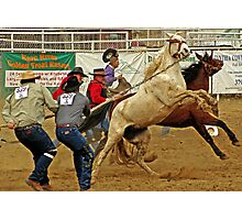 Wild horse roping - Kern County Photographic Print