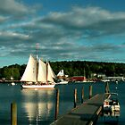 Boothbay Harbor by Alena Khandryka