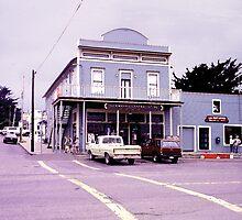 The General Store,Tomales, California by JoeArunski