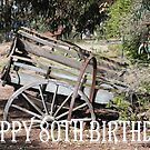 Happy80th Birthday by Coloursofnature