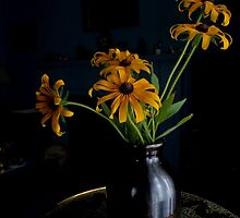 Black-Eyed Susan by goddarb