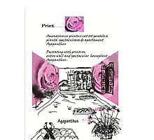 Decorating sketch Photographic Print
