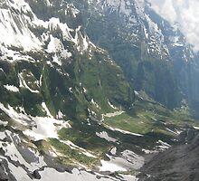 Alpine - Switzerland by Danielle Ducrest