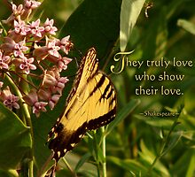 Truly Love ~ Inspirational by vigor