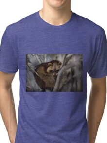 Raccoon in Tree Tri-blend T-Shirt