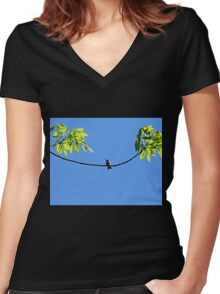 Perched Hummer Women's Fitted V-Neck T-Shirt