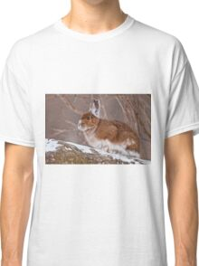 Snow Shoe Hare  Classic T-Shirt
