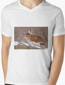 Snow Shoe Hare  Mens V-Neck T-Shirt