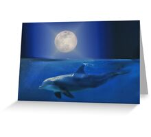 Dolphin and Moon Greeting Card