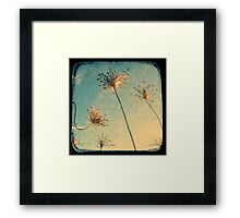 Reach for the Sky - TTV Framed Print